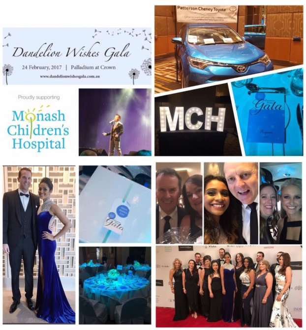 Dandelion Wishes Gala Contributors and Committee members