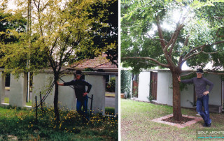Taras Wolf and his tree in 2005 and in 2015