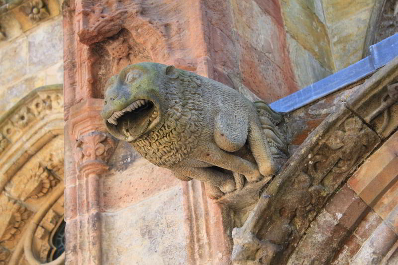 Gargoyle for water drainage off roof in old building.