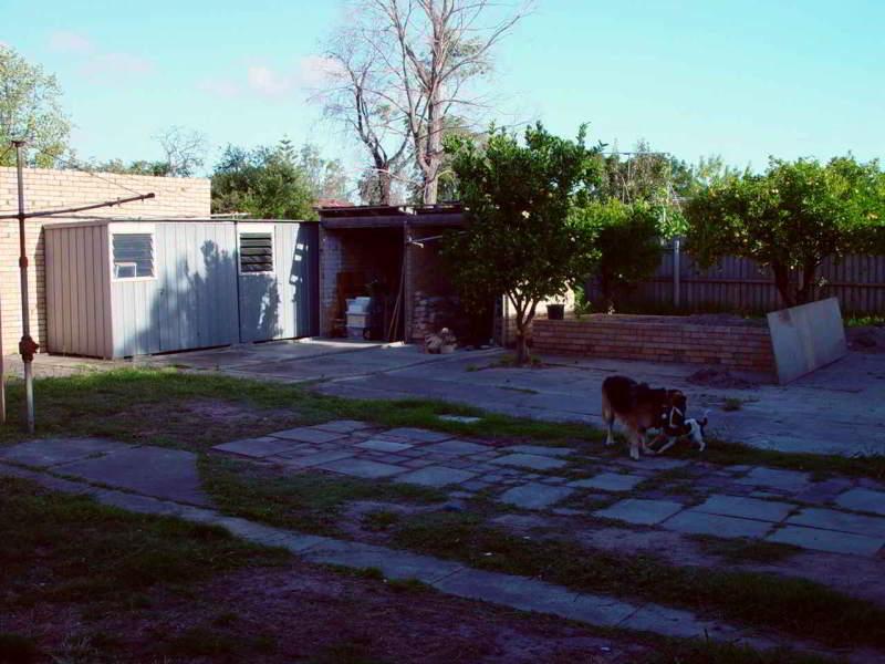 Wolf Back Yard in 2002